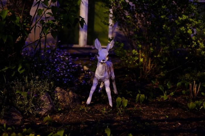 Garden Sculpture - Rzeźba Ogrodowa