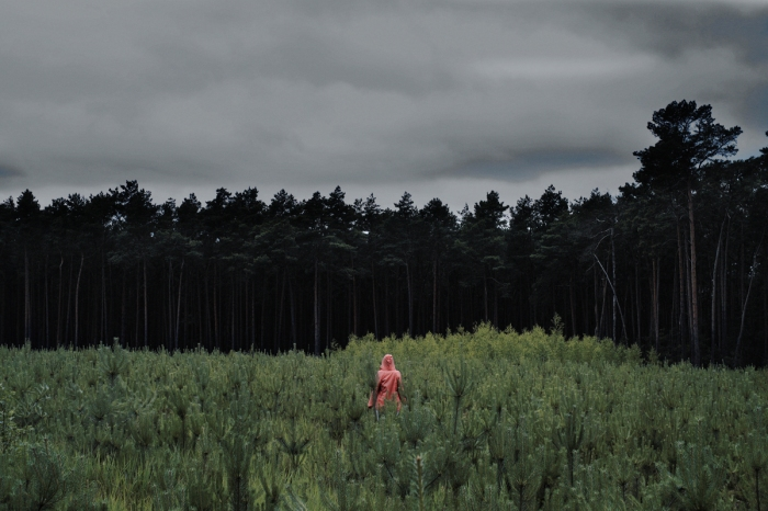 Forest - Las