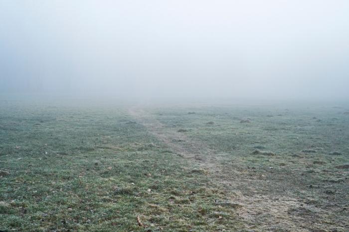 Mgła - Mist